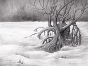 Twisted tree trunk  in the snow