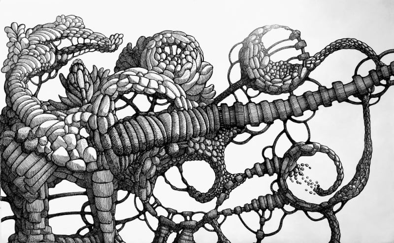 glorified-doodle - finished drawing