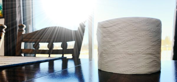 toilet-roll-header