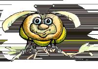 fat bug